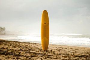 article blogplanche de surf iconic wood surf